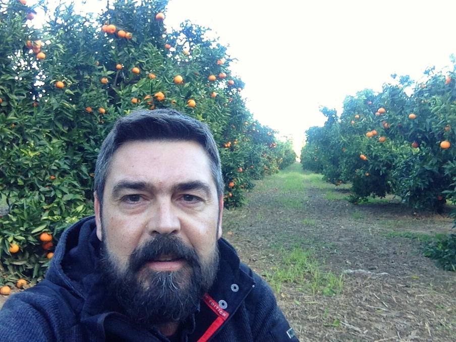 Mandariners.
